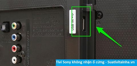 Tivi Sony không nhận ổ cứng